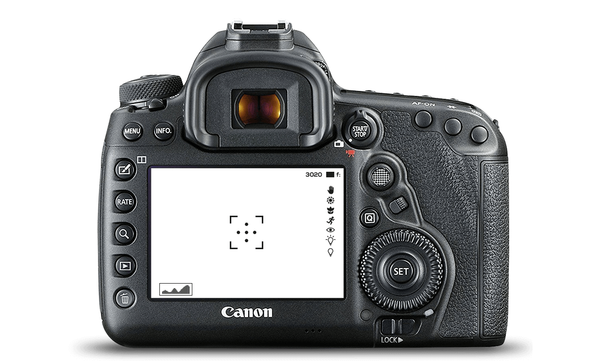 5d mark iv back